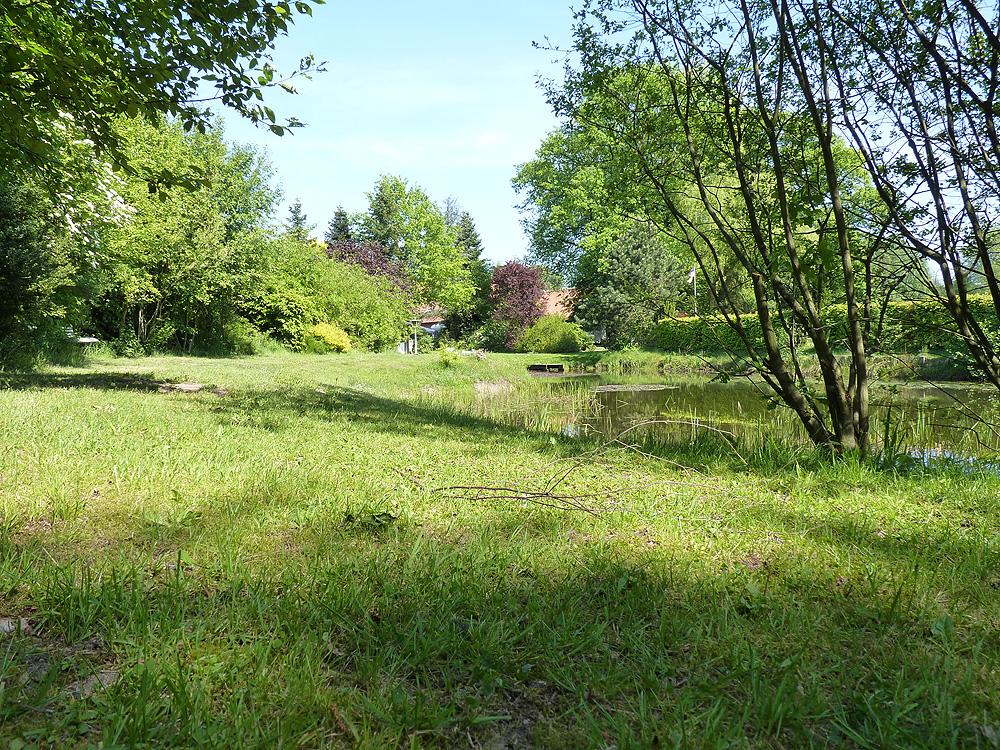 Garten Teich